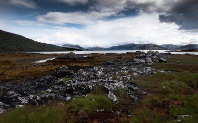 The Modern Gaelic Resurgence and My Role In It